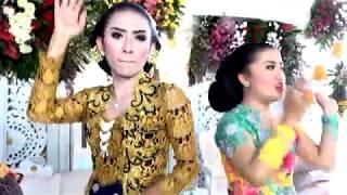 Download Video AKU CAH KERJO GOYANG SARU.....BINGIT Ngakak... MP3 3GP MP4