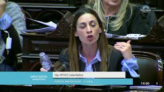 Video Diputada Pitiot Carla Betina - Sesión 13-06-2018 - PL MP3, 3GP, MP4, WEBM, AVI, FLV Agustus 2018