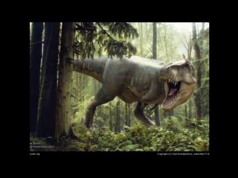 Musica dos dinossauros parte 2