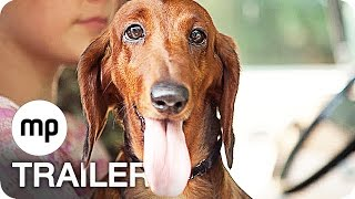 Nonton WIENER DOG Trailer German Deutsch (2016) Exklusiv Film Subtitle Indonesia Streaming Movie Download