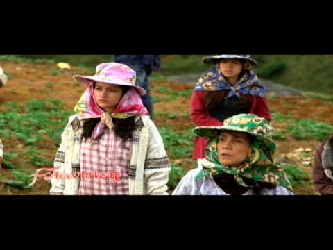 Watch TV SERIES: Forevermore - October 30 2014 episode online. The