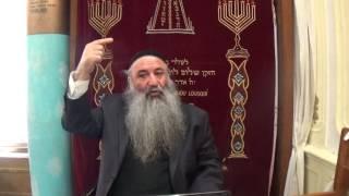 N°71 (3) La biographie de notre luminaire Rabbi Chimon Bar Yohaï , ses épreuves , sa grandeur dans l