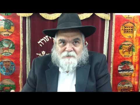 ביאור התפילה 28 וידיאו 3 דקות על ברכות התורה