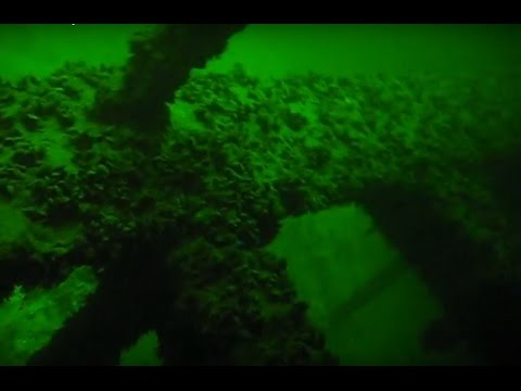 The best diving - Cargo ship Bryansk