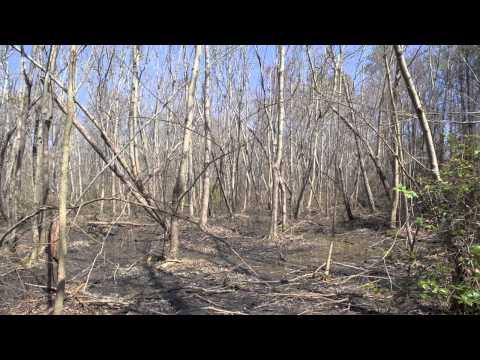 176.93 acres Louisburg, NC