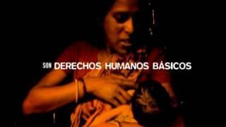 Cuña del Día Mundial de la Alimentación 2007