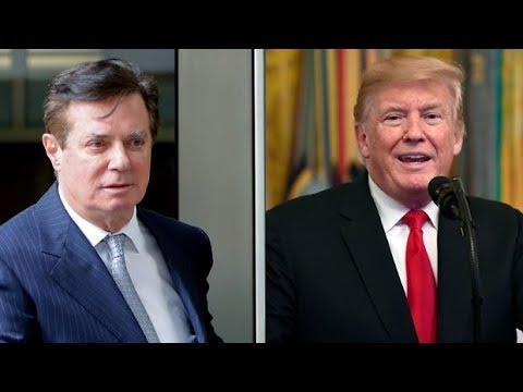Manafort pleads guilty to 2 counts, will co-operate 'fully' with Mueller investigation