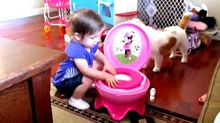 how to potty train a bunny youtube