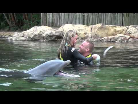 [Video] Pitcher Uses DOLPHIN To Propose To Girlfriend