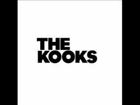 Tekst piosenki The Kooks - Mr.Maker po polsku
