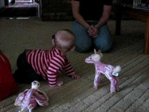 baby gives Eskimo kisses to her stuffed deer