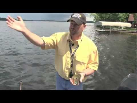 Catching Panfish in Choppy Water