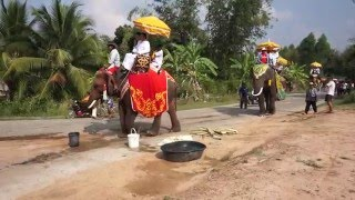 Lahan Sai Thailand  city photos gallery : Elephant in Lahansai 2016