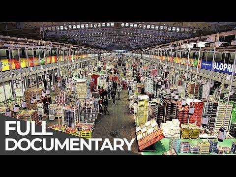 Giant Food Market: Rungis Paris | Giant Hubs | Episode 5 | Free Documentary