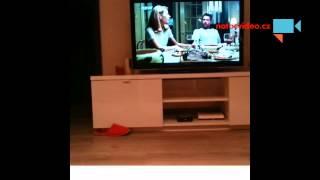 VIDEO DNE: Super rychlé mimino!