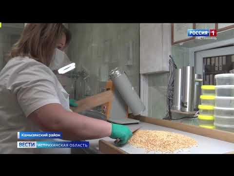 В Камызякской районной больнице проверили крупы на качество и безопасность