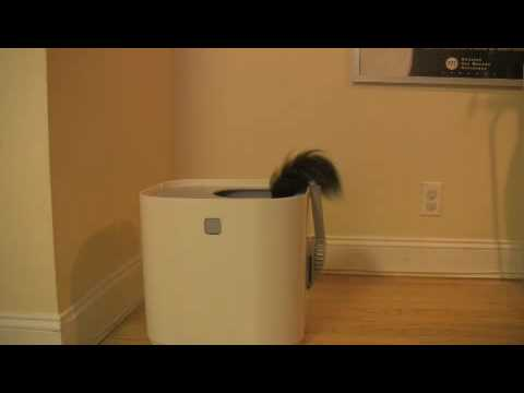 The Modkat Litter Box in action