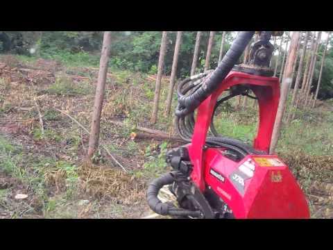 Florestal  cabeçote  370E