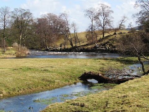 West Witton – River Ure – Redmire Force round | yorkshire dales  Walks