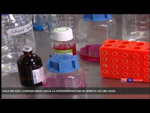 VACCINO ANTI-CORONAVIRUS: INIZIA LA SPERIMENTAZIONE IN VENETO | 03/08/2020