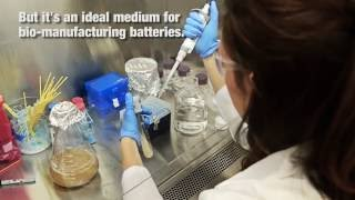 CU Boulder have learned how wastewater from brewing beer can be used to bio-manufacture components for batteries.