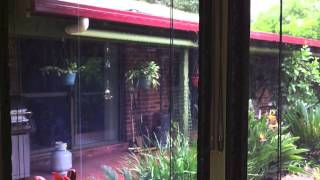 Clear PVC Cord & Pulley Awnings Alstonville Ballina