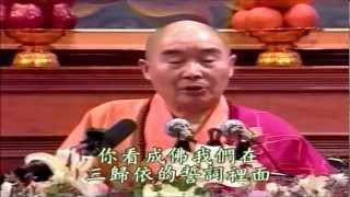 Kinh A Di Đà Yếu Giải Diễn Nghĩa (12-14) -  Pháp Sư Tịnh Không