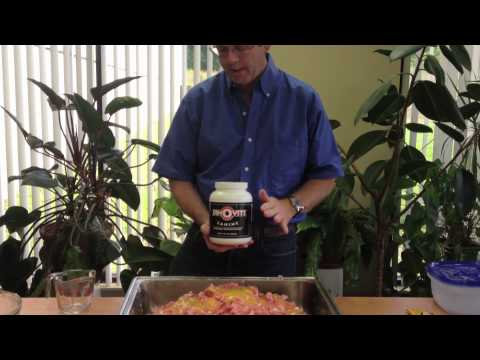 Homemade Dog Food Using Powder