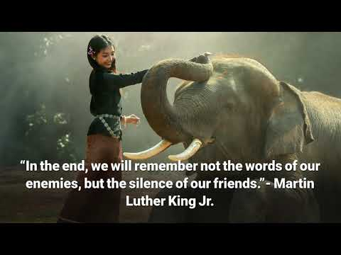 Friendship quotes - 37 Quotes on Friendship