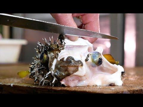 Japanese Street Food - PUFFERFISH Puffer Fish Okinawa Seafood Japan - Thời lượng: 36 phút.