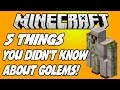 5 THINGS YOU DIDN'T KNOW ABOUT IRON GOLEMS IN MINECRAFT!