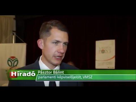 Programismertetőt tartott a VMSZ Nagybecskereken-cover