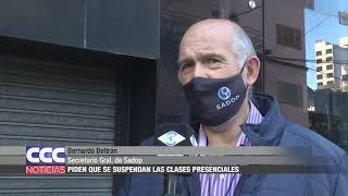 Bernardo Beltrán