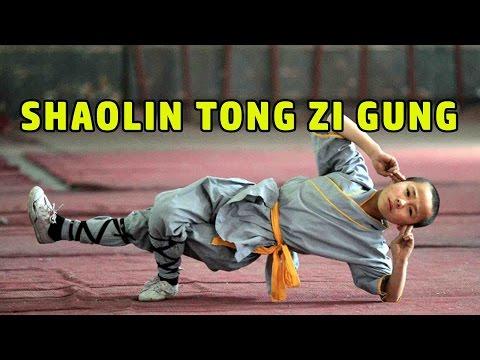 Wu Tang Collection - Shaolin Tong Zi Gung