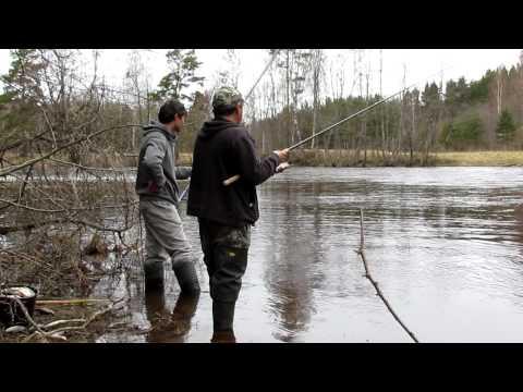 Все о ловле рыбы, снастях и оснастках