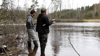 Весенняя ловля плотвы на поплавок. ч2