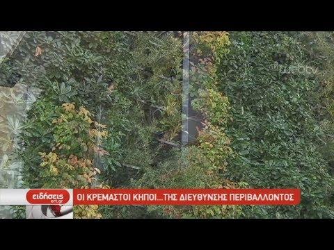Οι κρεμαστοί κήποι της Διεύθυνσης Περιβάλλοντος Θεσσαλονίκης