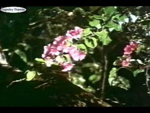 Video Kanneril Mulgum Odam from Mythili Ennai Kadhali download in MP3, 3GP, MP4, WEBM, AVI, FLV January 2017