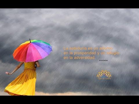 Frases de vida - Sabias frases para reflexionar y refrescar el alma. Que te ayudan a enfrentar la adversidad.