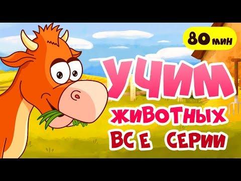 РАЗВИВАЮЩИЕ МУЛЬТИКИ про животных для детей! Звуки животных и другие серии для самых маленьких