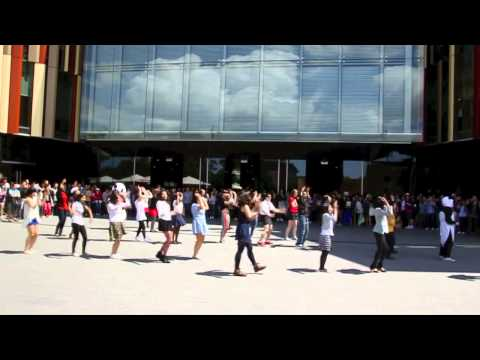 MacquarieUniversity - PSY- GANGNAM STYLE flash mob at Macquarie University , Sydney, Australia OPPA GANGNAM STYLE! Macquarie University Sydney, Australia.