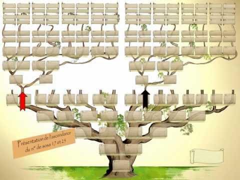 comment construire l'arbre des causes