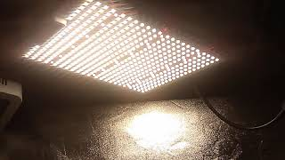 20% off ViparSpectra P1500 SMD tech led & more! flower tent update by Budzilla saurus