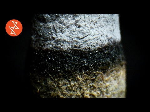Amazing Macro Video of Incense Burning