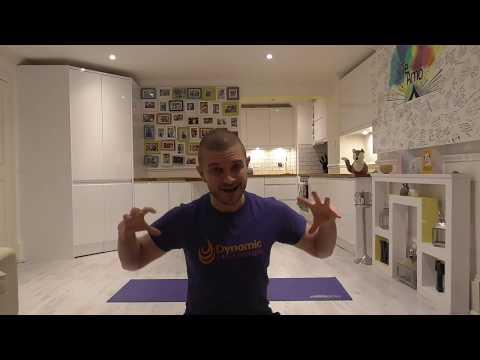 DIYP 17: Yoga Fundamentals (All)