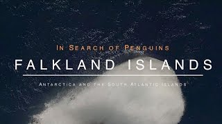 Highlights from an amazing holiday on-board the Hurtigruten expedition vessel - MS Fram to the Falklands Islands, South Georgia...