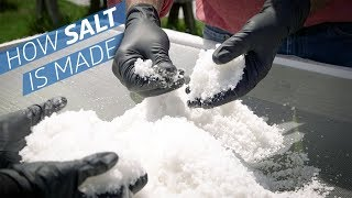 Where Does Salt Come From? —How to Make It