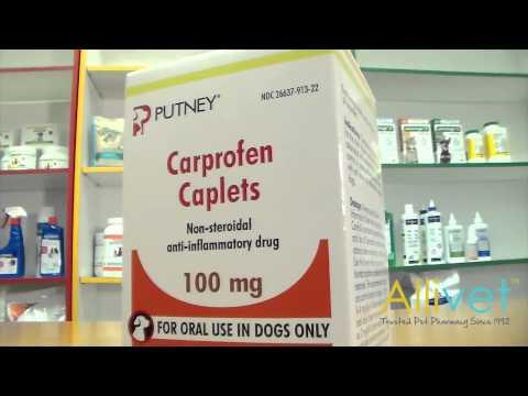 Carprofen Caplets for Dogs | Video | Allivet