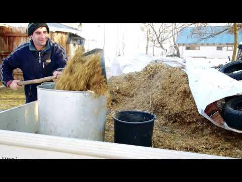 [video] Stana familiei Munteanu