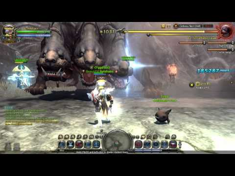 Dragon Nest NA Cerberus Hell Solo lv 40 Priest No Deaths